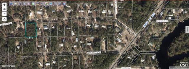NE Wildwood, Steinhatchee, FL 32359 (MLS #313380) :: Best Move Home Sales