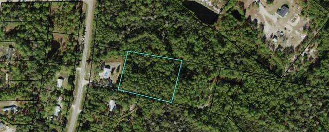 lot 9 Baytree Lane, Carrabelle, FL 32322 (MLS #313617) :: Team Goldband