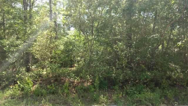 xx Chippewa, Crawfordville, FL 32327 (MLS #314112) :: Best Move Home Sales