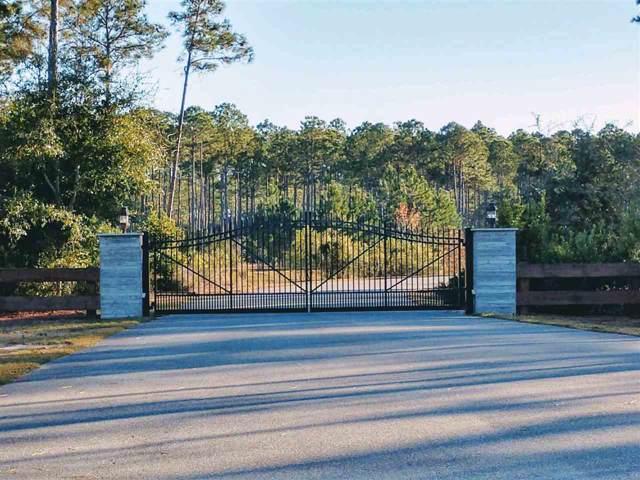 160 S'mores Way, St Teresa, FL 32323 (MLS #314424) :: Best Move Home Sales
