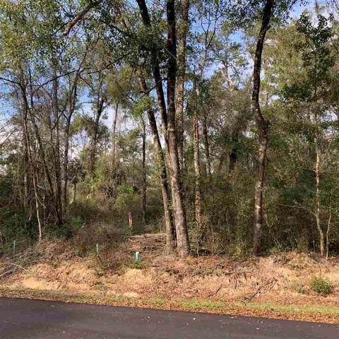 Lot 60 Chinook, Crawfordville, FL 32327 (MLS #314512) :: Best Move Home Sales