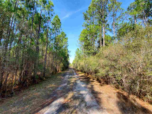 Vacant Boundary Road, Perry, FL 32347 (MLS #314886) :: Best Move Home Sales