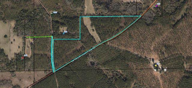Vacant Sw Taylor County Line Rd, Greenville, FL 32331 (MLS #315836) :: Best Move Home Sales