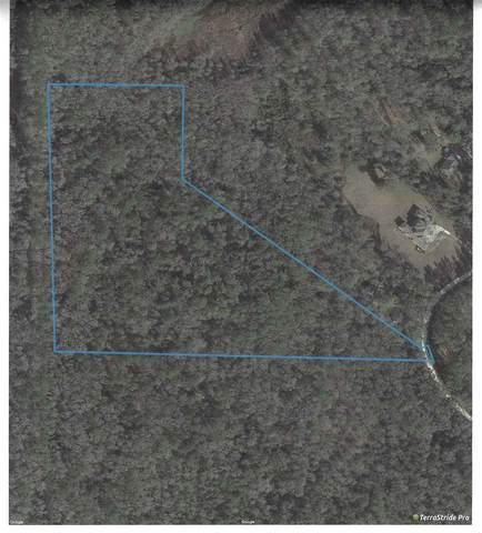 Ridge, Monticello, FL 32344 (MLS #316078) :: Best Move Home Sales