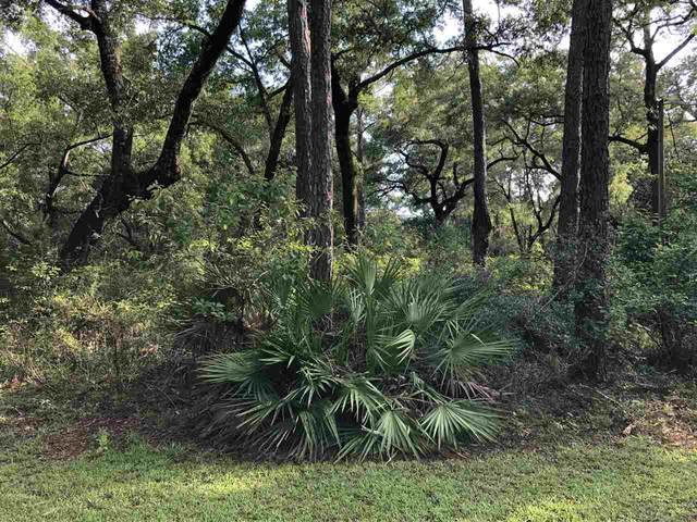 xxx Mackery Woods Road, Sopchoppy, FL 32358 (MLS #316353) :: Team Goldband
