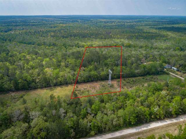 lot 3 Rio Paz Trace, Crawfordville, FL 32327 (MLS #317749) :: Team Goldband