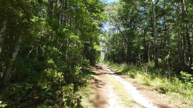 TBD Eastwood Drive, Monticello, FL 32344 (MLS #318611) :: Team Goldband