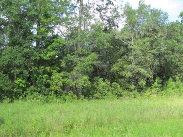 Sopchoppy Highway #1, Sopchoppy, FL 32358 (MLS #323755) :: Team Goldband