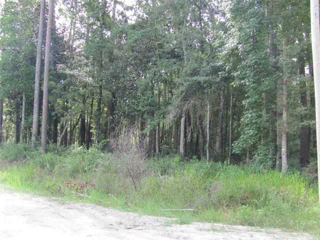 Sopchoppy Highway #1, Sopchoppy, FL 32358 (MLS #323759) :: Team Goldband