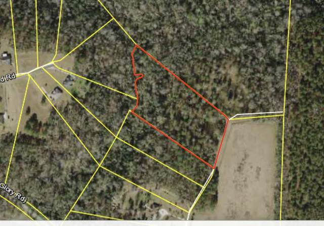 299 Upland Farm Road, Quincy, FL 32351 (MLS #324708) :: Team Goldband