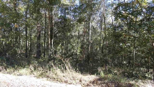 TBD Wood Duck Drive, Monticello, FL 32344 (MLS #326125) :: Team Goldband