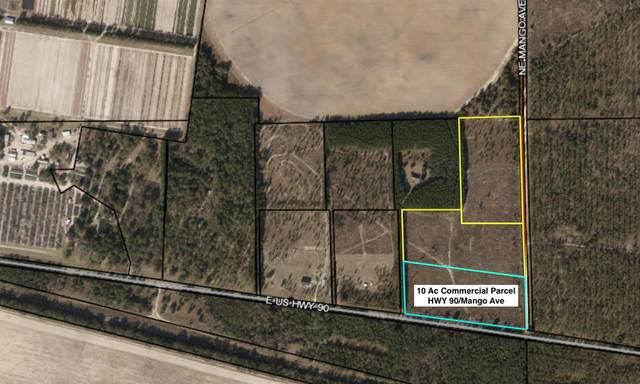 Vacant NE Mango Avenue, Lee, FL 32059 (MLS #326273) :: Danielle Andrews Real Estate
