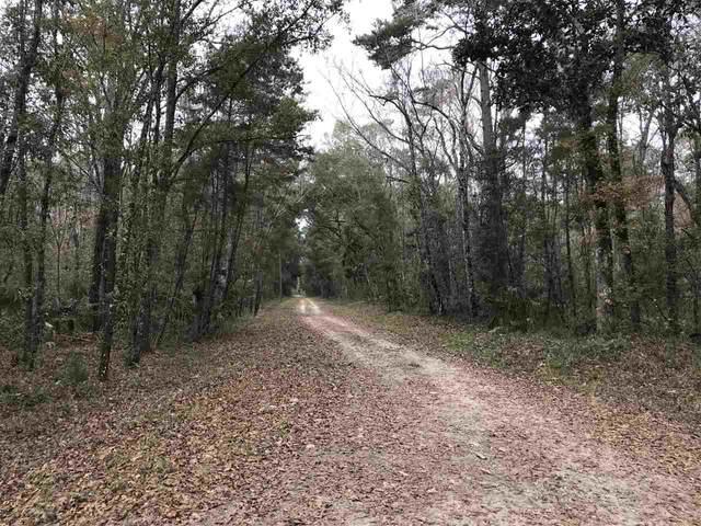 Lot 15 Fig Tree Lane, Crawfordville, FL 32327 (MLS #326921) :: Team Goldband