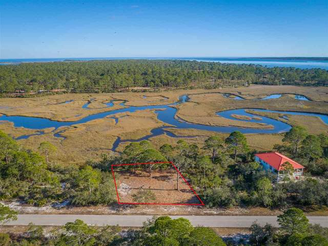 Lot 8 Turtle Creek Lane, Panacea, FL 32346 (MLS #327049) :: Team Goldband