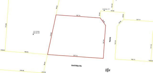 383 Quail Ridge Rd Road, Havana, FL 32333 (MLS #327261) :: Danielle Andrews Real Estate