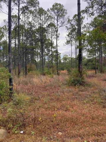 Baywood Drive, Carrabelle, FL 32322 (MLS #327424) :: Team Goldband