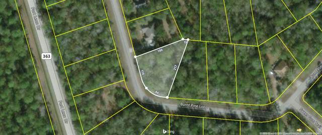85 Burnt Pine Loop, St Marks, FL 32355 (MLS #327860) :: Team Goldband