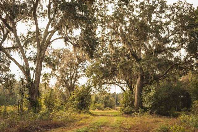 NW Honey Lake Road, Greenville, FL 32331 (MLS #327887) :: Team Goldband