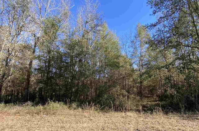 Vacant NE Nixon Way, Madison, FL 32340 (MLS #327982) :: Team Goldband