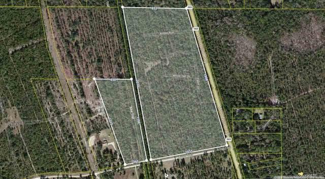 xx Acorn Trail, Crawfordville, FL 32327 (MLS #328666) :: Team Goldband