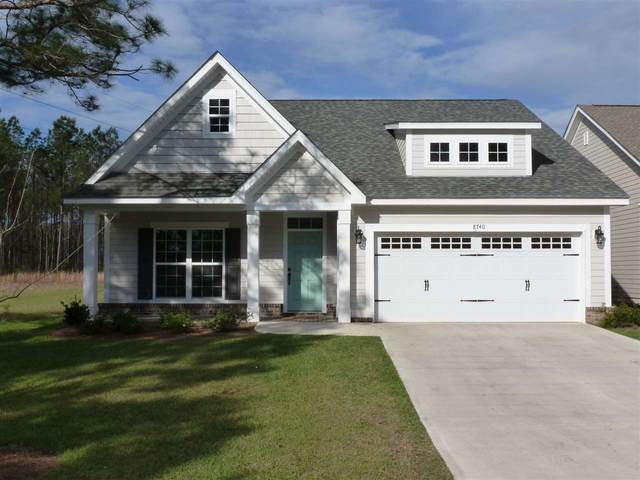 Royal Fern Circle, Tallahassee, FL 32317 (MLS #328732) :: Team Goldband