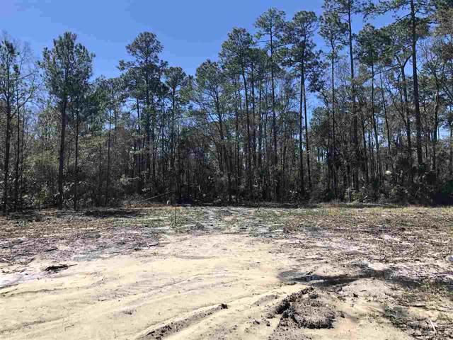 XX Burnt Pine Loop, St Marks, FL 32355 (MLS #328765) :: Team Goldband