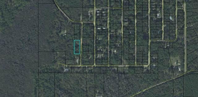 24 L M Street, Crawfordville, FL 32327 (MLS #328900) :: Team Goldband