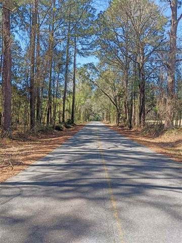 Vacant NW Settlement Road, Madison, FL 32350 (MLS #328961) :: Danielle Andrews Real Estate