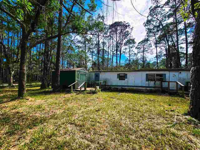 63 Levy Bay Road, Panacea, FL 32346 (MLS #329122) :: Team Goldband