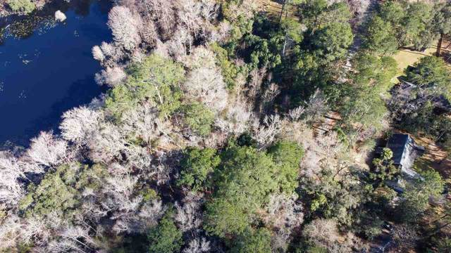 10557 Lake Iamonia Drive, Tallahassee, FL 32312 (MLS #329128) :: Danielle Andrews Real Estate