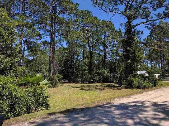 xx Suwannee Avenue, Panacea, FL 32346 (MLS #329130) :: Team Goldband