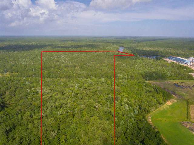 73 Hope Lane -, St Marks, FL 32355 (MLS #329335) :: Team Goldband