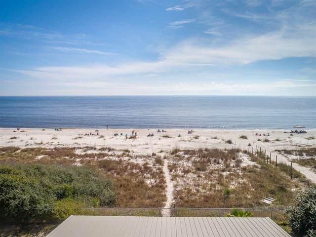 1419 Alligator Drive, Alligator Point, FL 32346 (MLS #329342) :: Danielle Andrews Real Estate