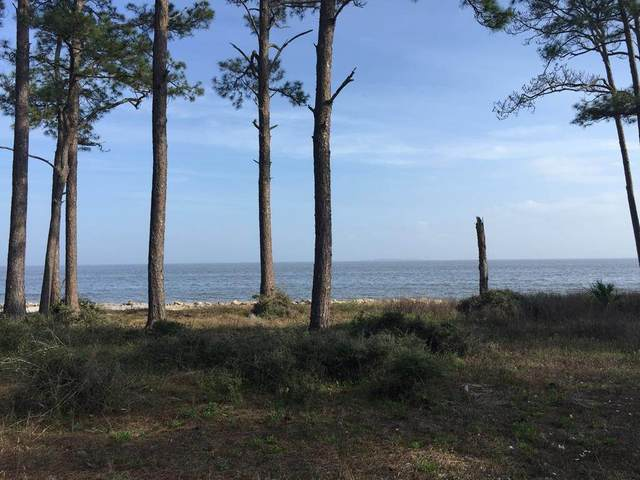 2000 Mary's Beach Lane, Carrabelle, FL 32322 (MLS #329365) :: Team Goldband
