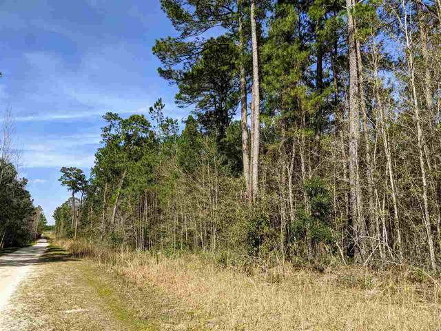 xxxx Bob White Trail, Monticello, FL 32344 (MLS #329968) :: Danielle Andrews Real Estate