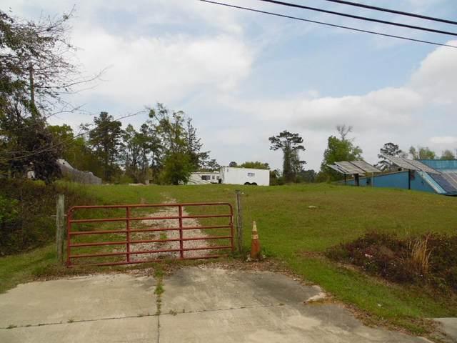 3120 Tharpe Street, Tallahassee, FL 32303 (MLS #330212) :: Team Goldband