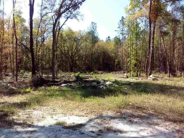 107 Mt. Zion Road, Crawfordville, FL 32327 (MLS #330600) :: Team Goldband
