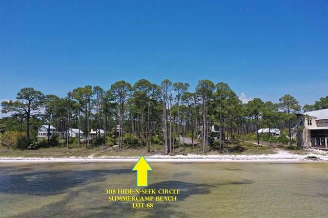 308 Hide-N-Seek Circle, St Teresa, FL 32358 (MLS #330634) :: Team Goldband