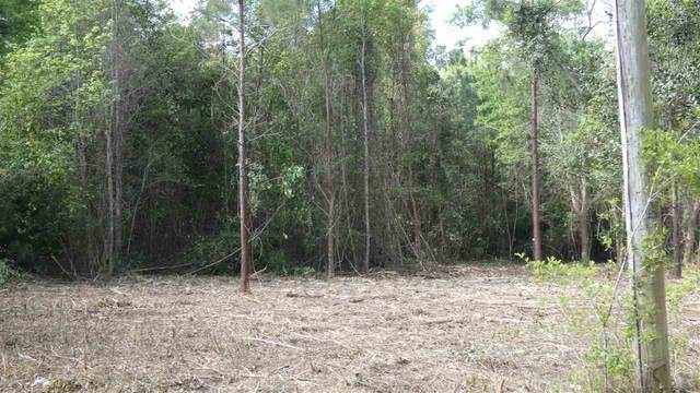 TBD Coopers Pond Road, Monticello, FL 32344 (MLS #330705) :: Danielle Andrews Real Estate