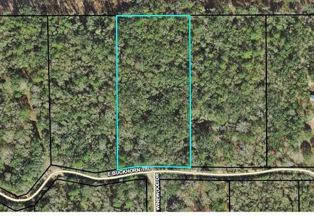 TBD E Buckhorn Trail, Greenville, FL 32331 (MLS #330796) :: Danielle Andrews Real Estate