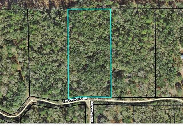 TBD E Buckhorn Trail, Greenville, FL 32331 (MLS #330796) :: Danielle Andrews Real Estate