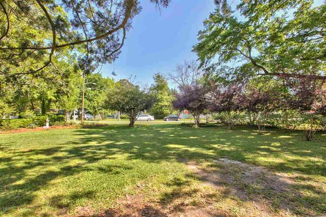 Charter Oaks Drive, Tallahassee, FL 32303 (MLS #330942) :: Team Goldband