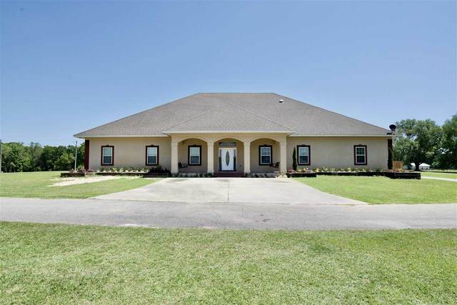 250 Hiawatha Farms Road, Monticello, FL 32344 (MLS #331042) :: Danielle Andrews Real Estate