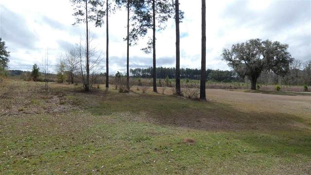 TBD Sundance Road, Monticello, FL 32344 (MLS #331108) :: Danielle Andrews Real Estate
