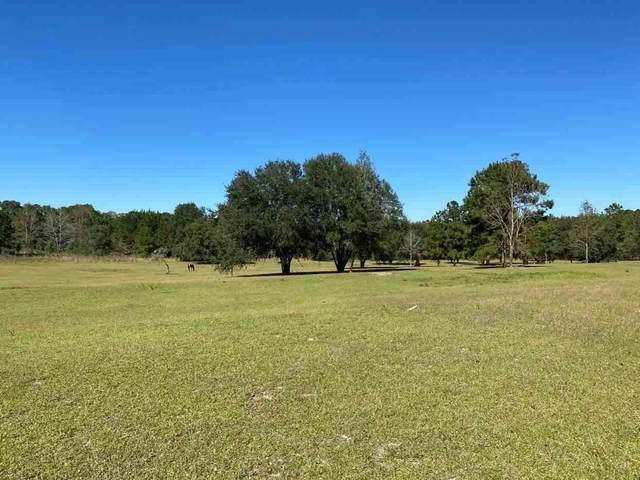981 NW Radford Denson Road, Greenville, FL 32331 (MLS #331132) :: Team Goldband