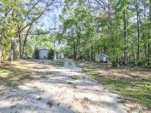 19338 N By Northwest Road, Tallahassee, FL 32310 (MLS #331146) :: Danielle Andrews Real Estate