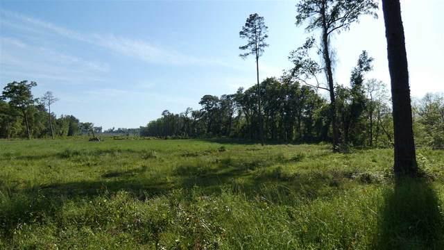 TBD Bassett Dairy Road, Monticello, FL 32344 (MLS #331239) :: Team Goldband