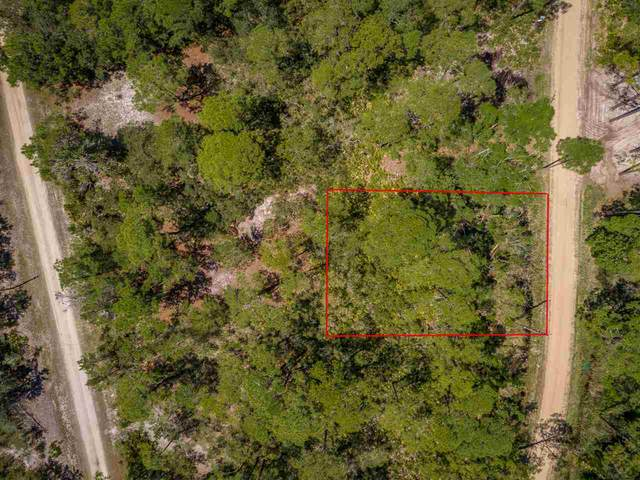 92 Lakeview Drive, Bald Point, FL 32346 (MLS #331248) :: Team Goldband