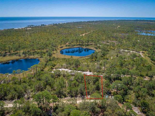 100 Fernway Road, Bald Point, FL 32346 (MLS #331249) :: Team Goldband