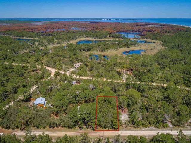 91 Fernway Road, Bald Point, FL 32346 (MLS #331250) :: Team Goldband